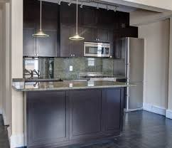 kitchen cabinets in nyc home and interior