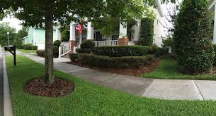orlando lawn care and landscaping services