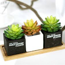 Home Plant Decor by Online Get Cheap Artificial Cactus Plants Aliexpress Com