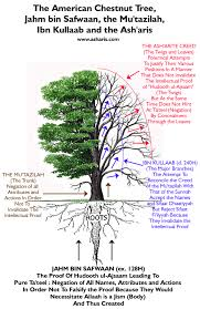 the american chestnut tree the willow tree jahm bin safwan the