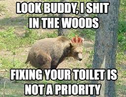 Hey Buddy Meme - hey buddy landlord bear know your meme