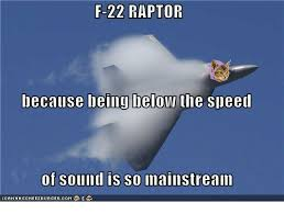 Meme Raptor - f 22 raptor because being below the speed of sound is so mainstream