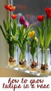 Indoor Plant Arrangements 716 Best Floral Arrangements Images On Pinterest Flowers Floral