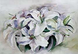Casablanca Flower - casablanca lily painting by trang phan