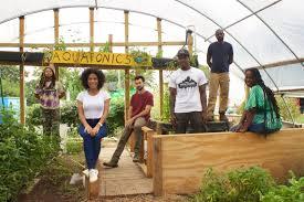 Urban Gardening Philadelphia - urban creators