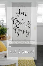 i u0027m going grey and i love it interior door doors and gray