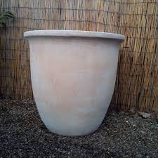 Large Planter Pot by Large Terracotta Pot Planter With Delivery To Sw London Every Day