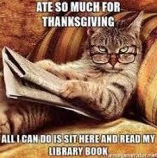 Gratitude Meme - a year in library memes and why we need more i love libraries