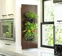 indoor kitchen garden ideas indoor herb garden ideas for decoration small garden ideas