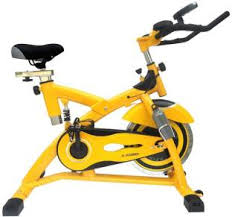 lifemax dual action fan bike exercise bikes buy exercise cycles stationary bikes online at