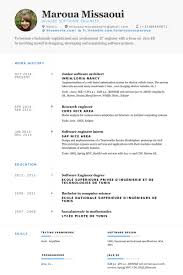 resume for software developer software architekt cv beispiel visualcv lebenslauf muster datenbank