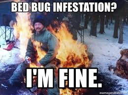 Bed Bug Meme - bed bug infestation i m fine fire meme generator