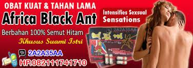 obat kuat africa black ant asli afrika selatan agus uye shop
