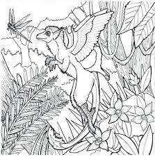 articles tropical rainforest printable coloring pages tag