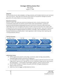 sample career action plan my business career goals essay richard