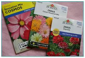 cheap seed packets cheap flower seed packets