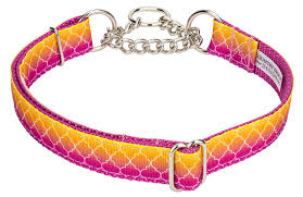 ombre ribbon buy fabulous ombre ribbon half check dog collar online