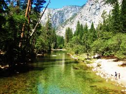 Yosemite Valley Map Black Bears And Tent Cabins My Yosemite Experience The Culture Map