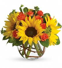Affordable Flowers - sunny sunflowers in royal oak mi affordable flowers