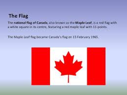 maple tree symbolism symbols of the canadian government