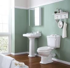 Painting Bathroom Cabinets Color Ideas Light Green Bathroom Paint