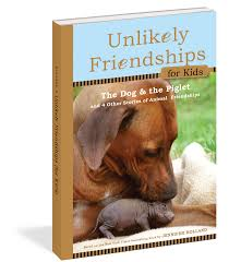 unlikely friendships for kids the dog u0026 the piglet workman
