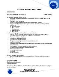 Resume Format For Executive Resume Format For Senior Management Position Resume Format