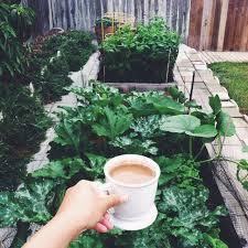 Houston Urban Gardeners - 7 best urban gardening projects images on pinterest urban