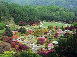 the garden of morning calm 아침고요수목원 official korea
