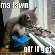 Get Off My Lawn Meme - get off my lawn
