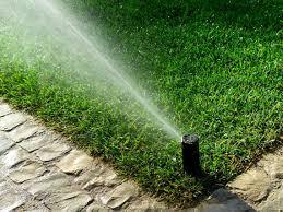 irrigation creative habitats
