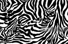 pattern formation zebra 9 zebra patterns psd vector eps png format download free