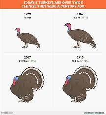 the turkey you re about to eat weighs as much as it did a few