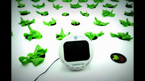 22 day lettuce time lapse by indoor harvest youtube