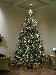 michigan christmas tree association christmas tree checkoff