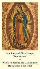 free catholic holy cards bilingual catholic prayer cards