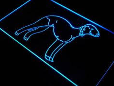 bedlington terrier guard dog img 6072 bedlington terriers f c pup and terrier