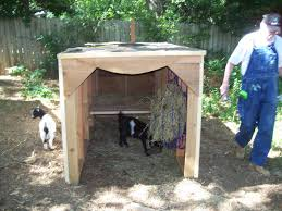 Goat Home Decor Home Decor Creative Goat Home Decor Interior Design For Home