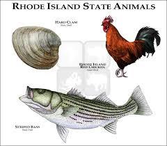 Rhode Island wildlife images Wildlife art state animals rhode island state animals jpg
