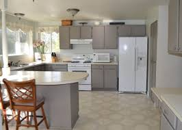 Best Type Of Kitchen Faucet Laminate Countertops Best Type Of Paint For Kitchen Cabinets