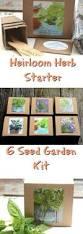 best 25 herb garden kit ideas on pinterest cooking herbs garden