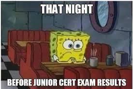 Junior Meme - junior cert 2016 memes home facebook