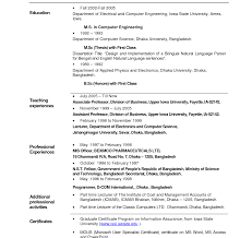 sle resume format exceptional best resume doc format template for it professionals