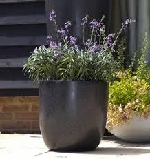fibreglass planters modern bullet large fibreglass terrazzo