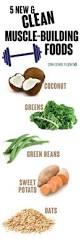 best 25 bodybuilding diet ideas on pinterest muscle building