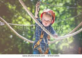 tree climbing stock images royalty free images vectors