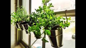 good small indoor herb garden design ideas youtube
