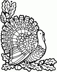 thanksgiving turkey free printable coloring pages desenhos