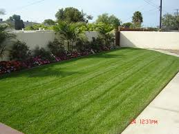Trees Backyard Backyard Landscaping With Trees Backyard Landscaping Photo Gallery