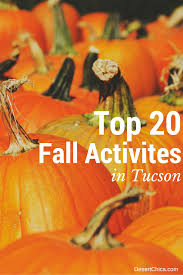 top 20 things to do in tucson this fall desert chica